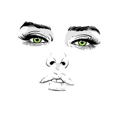 Woman face portrait outlines digital sketch vector