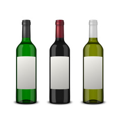 Set 3 realistic wine bottles with blank vector