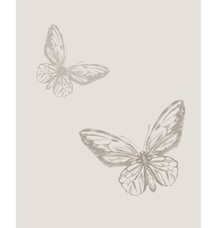 Vintage hand drawing butterfly eps 8 vector image