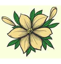 flower with leaves in a hand-painted graphic style vector image vector image
