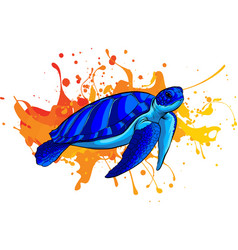 blue sea turtle on colored background vector image