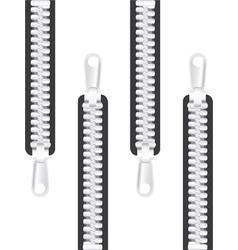 Clothing zips vector image