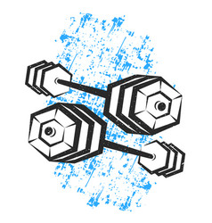 dumbbells for sports vector image