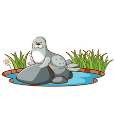 Isolated picture seal in pond vector