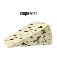 Roquefort soft blue cheese made from ewes milk vector