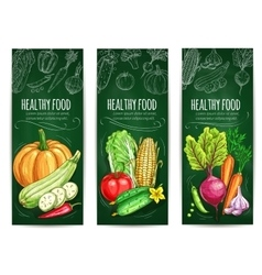 Vegetable healthy food chalk sketch banner set vector image