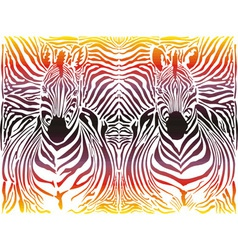 Zebra abstract pattern background vector