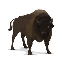 Big cartoon bison wild animal vector