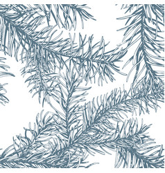 blue fir branches seamless pattern vector image