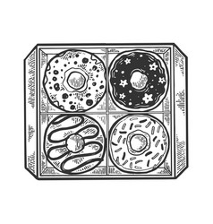box with donuts engraving vector image