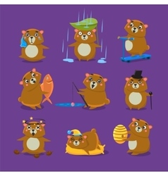 Brown Bear Different Emotions Set vector