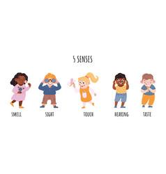 Children five senses consent sense of sight vector