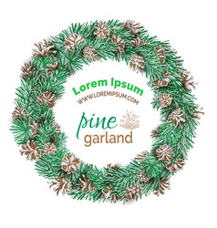 christmas pine round wreath isolated on white vector image vector image