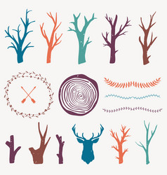 colorful graphic set with forest design elements vector image