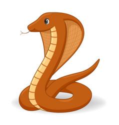 Egyptian cobra snake on a white background vector