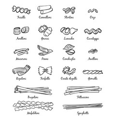 Linear pictures of classical italian food vector