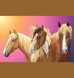 Set of horses breeds 8 vector