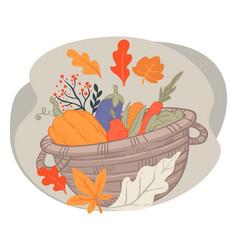 basket with harvested vegetables autumn pumpkin vector image
