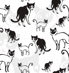 Cats mix pattern vector