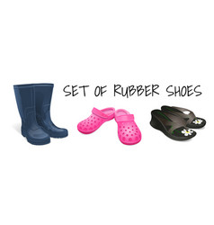 footwear for the garden vector image