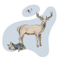 hand drawn deer familie vector image
