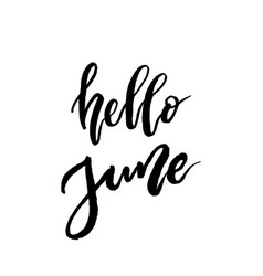 hello june brush lettering vector image