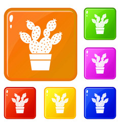 Prickly pear icons set color vector