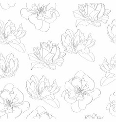 Seamless pattern with line tulips flowers vector