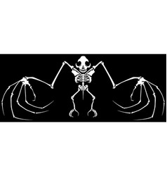Skeleton bat vector