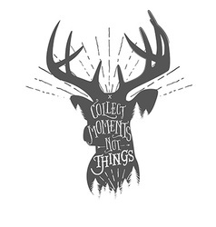 Vintage with wilderness quote on deer vector image