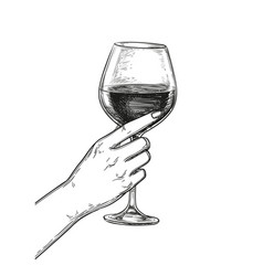 hand holding a glass of wine vector image vector image