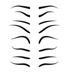 set of eyebrow collection vector image