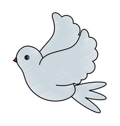 white bird of peace vector image vector image