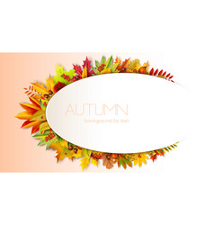 autumn oval frame for text decorated with foliage vector image