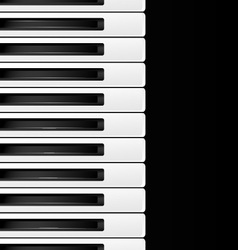 black and white keys vector image