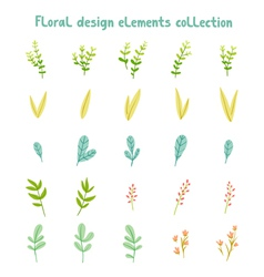 Decorative leaves and flowers design elements vector image