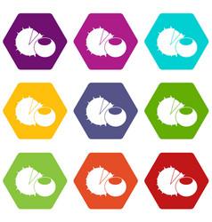hazelnuts icon set color hexahedron vector image