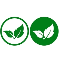 two green leaves icons vector image
