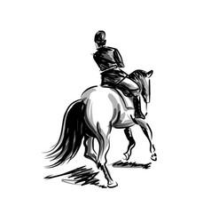 ink sketch rider on horseback vector image