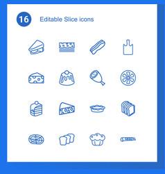 16 slice icons vector