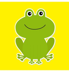 Cute green cartoon frog White background vector