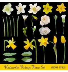 Vintage Flower Set - Spring Flowers - Watercolor vector image