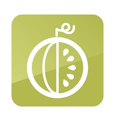 Watermelon outline icon Fruit vector image