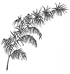antique foliage engraving vector image vector image