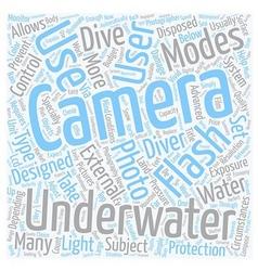 How do Underwater Cameras Work text background vector image