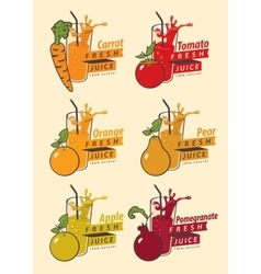 fruits and glass for fresh juice vector image