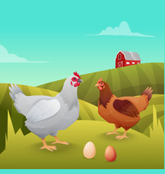 Hens standing on grass with farm background vector image