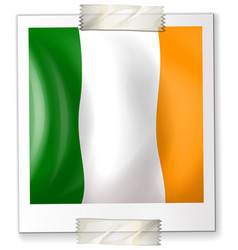 badge design for ireland flag vector image vector image