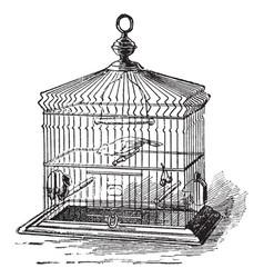 Birdcage vintage vector