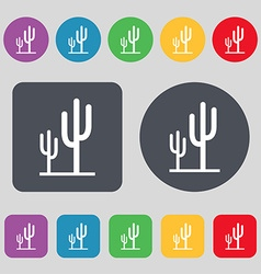 Cactus icon sign A set of 12 colored buttons Flat vector